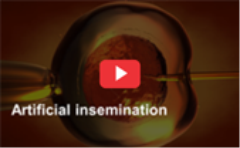 artificial_insemination